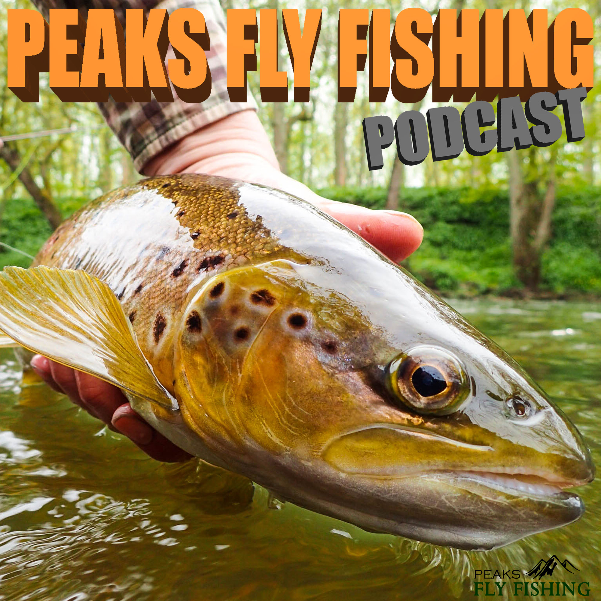 Peaks Fly Fishing Podcast Fly Fishing Podcast - Saltwater Fly Fishing In Anglesea