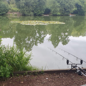 Quest Fishing Adventures - Carp Pike Barbel Chub Perch Bream Roach Gotta Catch Them All 31: Nandos Lake 012 / Carp Fishing
