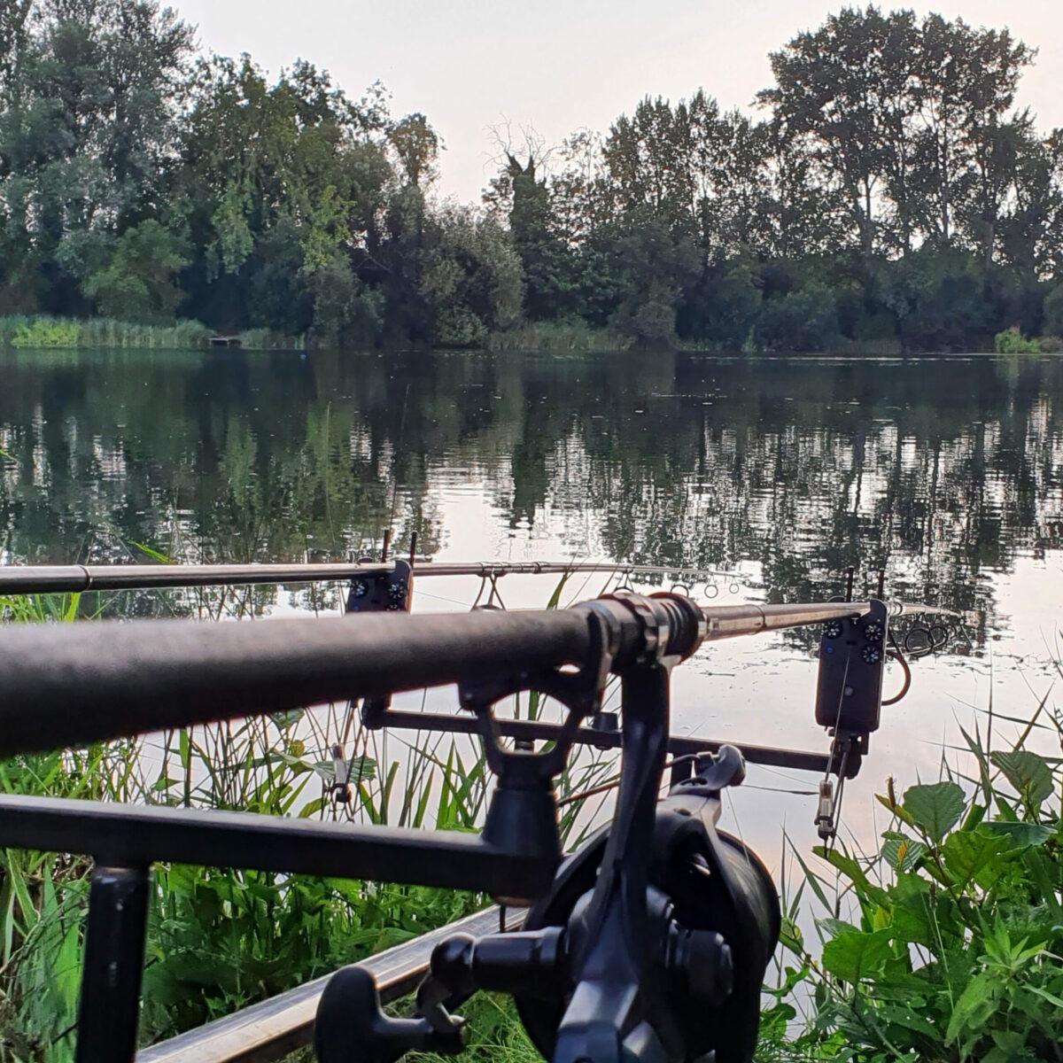 Quest Fishing Adventures - Carp Pike Barbel Chub Perch Bream Roach Gotta Catch Them All 36: Nandos Lake 014 / Carp Fishing